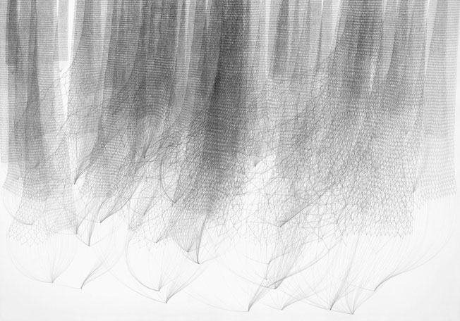 Stephanie Kratz :: Drawing :: Sequence 1, 2/5